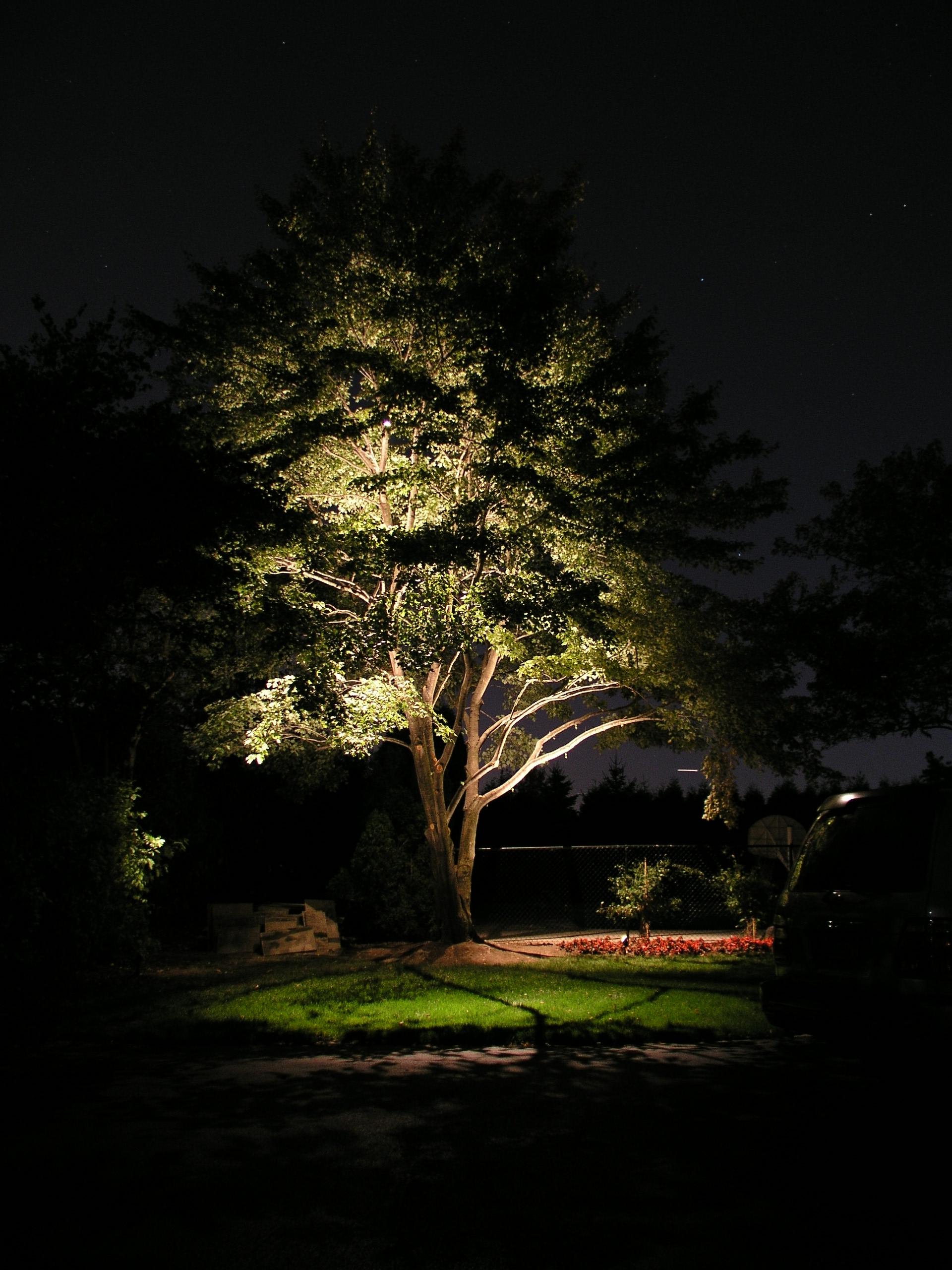 Installing Low Voltage Best Led Outdoor Landscape Lighting Kits