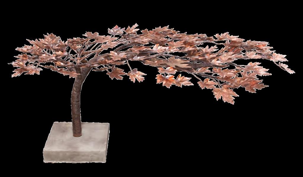 vf_coppertrees10b